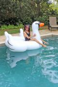 swim wear pool swan toy 048 Alex Malay