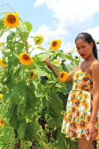 sunflower dress 6 -2